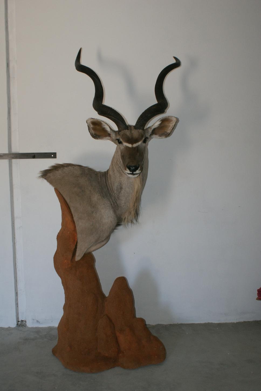 Termite Mount Pedestal Kudu